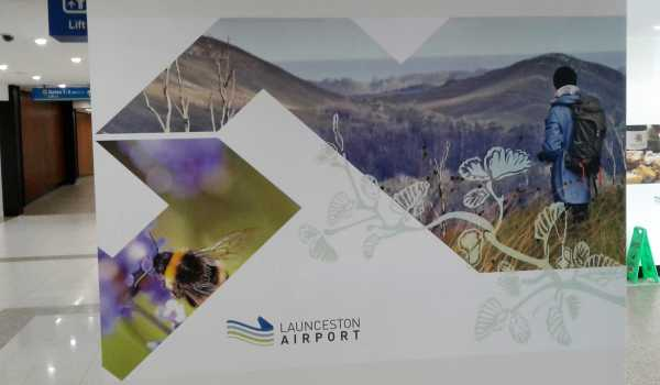 Launceston Airport Wall Graphics