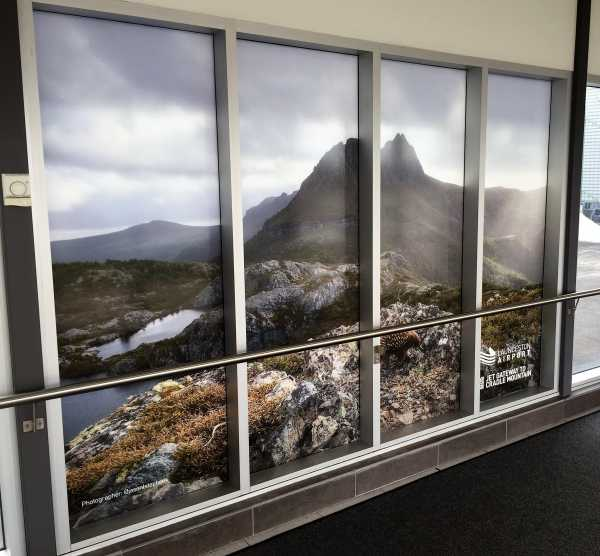 Launceston Airport Window Graphics Interior Design