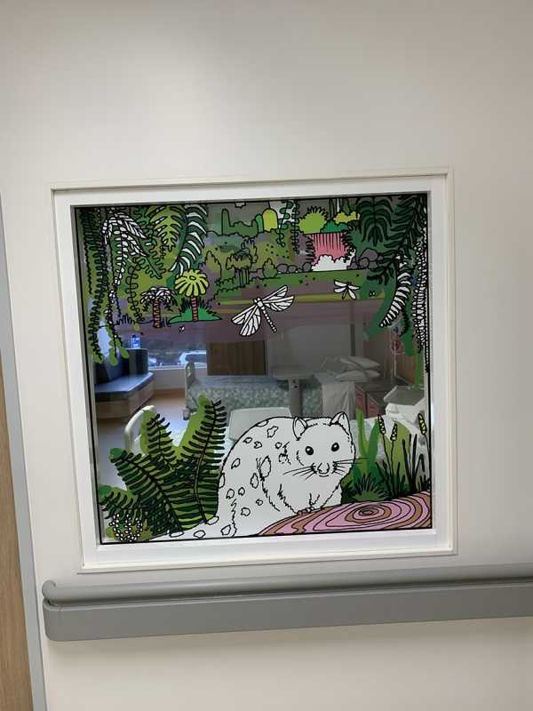 Hospital window graphics childrens ward