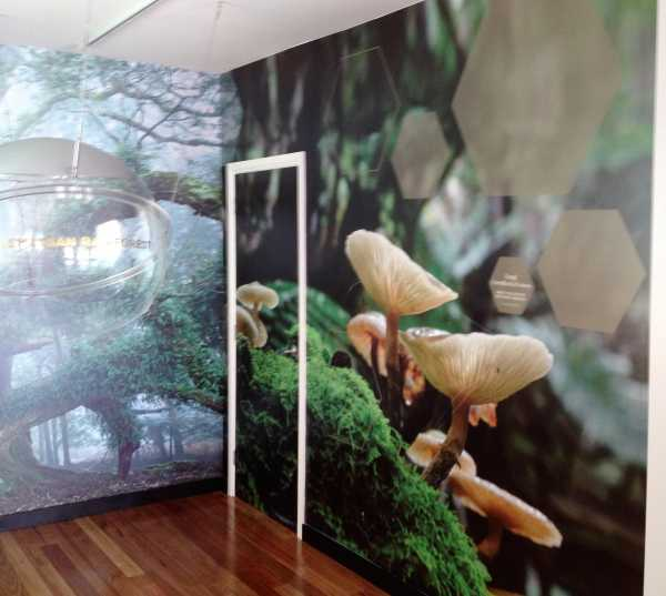 Futago The Sensory Wall Wrap Graphics Interior Design
